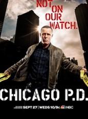 시카고 PD 시즌5